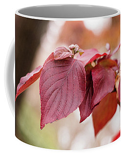 Fall Color 5528 51 Coffee Mug