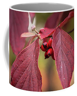Fall Color 5528 53 Coffee Mug