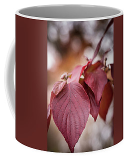 Fall Color 5528 54 Coffee Mug