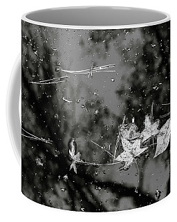 Fall Color 5528 58 Coffee Mug