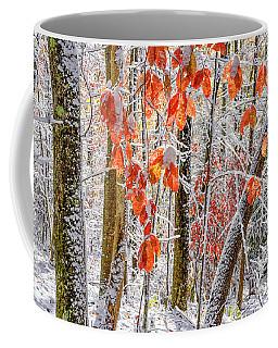 Fall Color Autumn Snow Coffee Mug