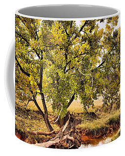 Fall Color Coffee Mug