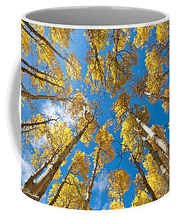 Fall Colored Aspens In The Inner Basin Coffee Mug by Jeff Goulden