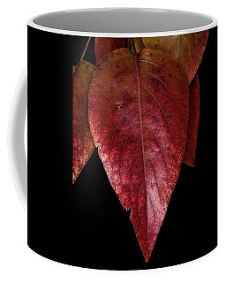 Coffee Mug featuring the photograph Fall Colors 3 by James Sage