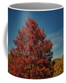 Coffee Mug featuring the photograph Fall Colors, Ashville, Nc by Richard Goldman