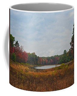 Fall Colors At Gladwin 4459 Coffee Mug