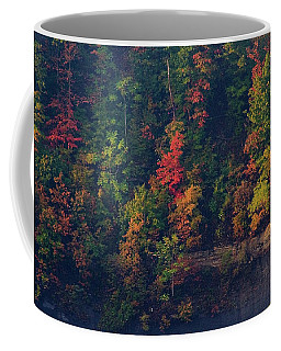 Fall Colors Coffee Mug