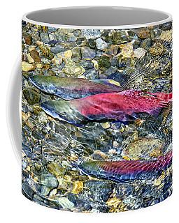 Fall Colors Coffee Mug by David Lawson