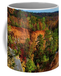 Fall Colors In The Canyon Coffee Mug by Barbara Bowen