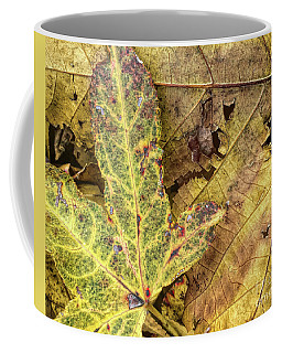 Fall Contrast Coffee Mug