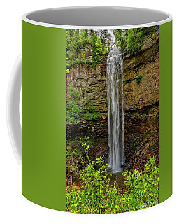 Coffee Mug featuring the photograph Fall Creek Falls by Christopher Holmes