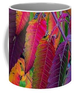 Fall Feathers Coffee Mug