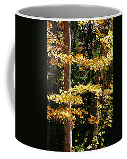 Fall Forest 1 Coffee Mug
