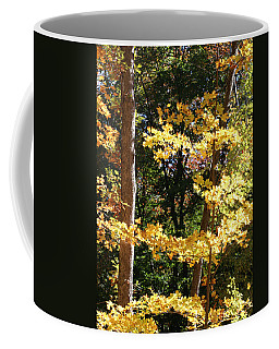 Fall Forest 3 Coffee Mug