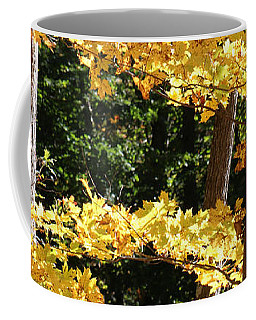 Coffee Mug featuring the photograph Fall Forest 3 by William Selander