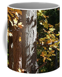 Coffee Mug featuring the photograph Fall Forest 4 by William Selander
