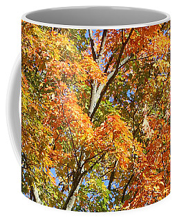 Coffee Mug featuring the photograph Fall Gradient by William Selander