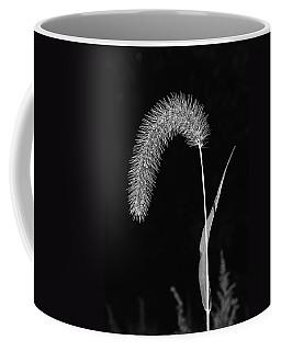Fall Grass 1 Coffee Mug