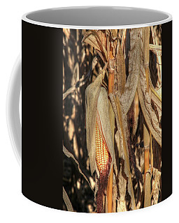 Fall Harvest Awaits Coffee Mug