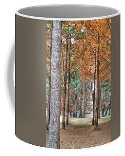 Fall In Korea Coffee Mug