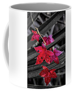 Coffee Mug featuring the photograph Fall In Louisiana by Andy Crawford