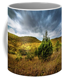 Fall In The Ozarks Coffee Mug