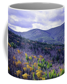 Fall In The White Mountains Coffee Mug