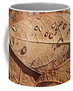 Fall Leaves And Dew 15 2017 Coffee Mug