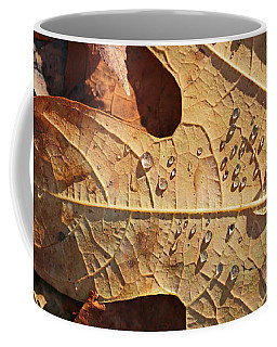 Fall Leaves And Dew 3 2017 Coffee Mug
