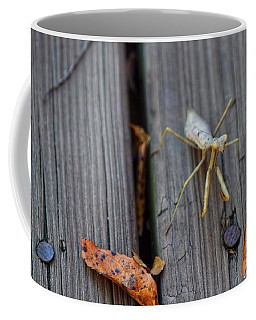Fall Mantis  Coffee Mug