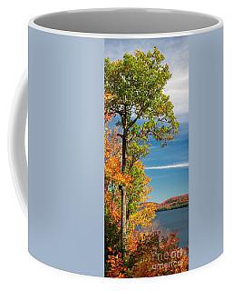 Coffee Mug featuring the photograph Fall Oak Tree by Elena Elisseeva