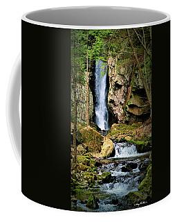 Falls Of Song Coffee Mug