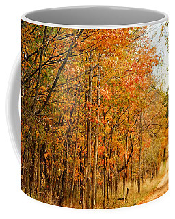 9012 - Fall On Murphy Lake II Coffee Mug