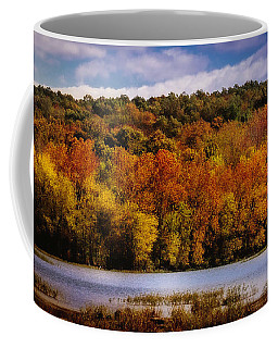 Fall On Springfield Lake Coffee Mug