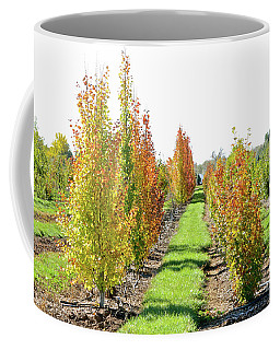 Fall On The Tree Farm Coffee Mug