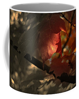 Fall Or Not Coffee Mug