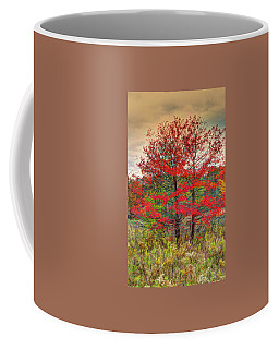 Coffee Mug featuring the photograph Fall Painting by Skip Tribby