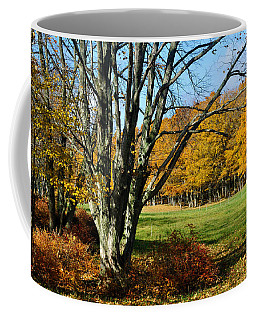 Fall Pasture Coffee Mug