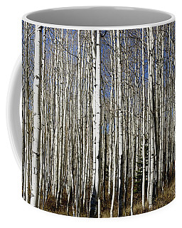 Fall Quaking Aspens Panorama Coffee Mug