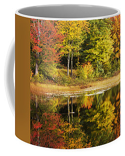 Coffee Mug featuring the photograph Fall Reflection by Chad Dutson