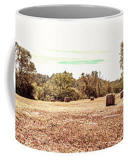 Fall Rolls Coffee Mug
