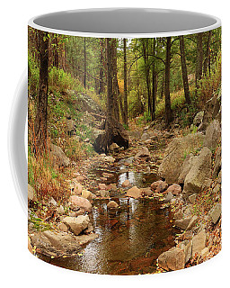 Coffee Mug featuring the photograph Fall Stream And Rocks by Roena King