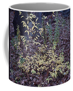 Fall Subtle Colors Coffee Mug