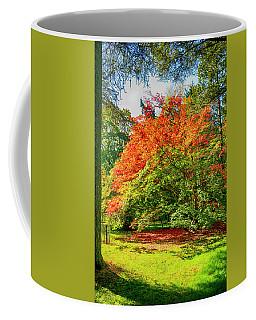 Fall Tints Coffee Mug