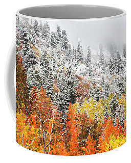 Coffee Mug featuring the photograph Fall To Winter Canvas Print, Photographic Print, Art Print, Framed Print, Greeting Card, Iphone Case by David Millenheft
