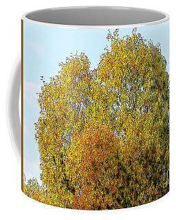 Fall Tree Coffee Mug by Craig Walters