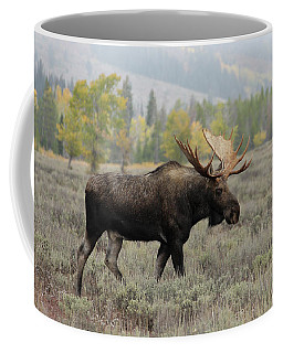 Coffee Mug featuring the photograph Fall Visitor by Ronnie and Frances Howard