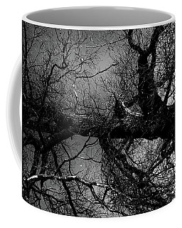Fallen Dark Wood Forest Coffee Mug