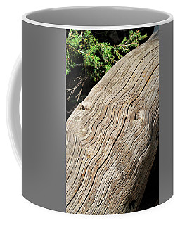 Fallen Fir Coffee Mug