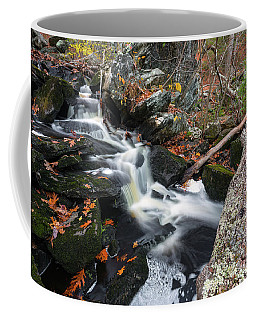 Fallen In Danforth Falls Coffee Mug